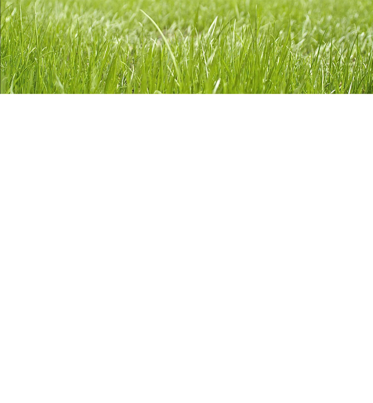 Nuovo - Getto Macchine Agricole Ivrea - vendita online assistenza e  riparazioni di macchine agricole 0cb7de95ec2